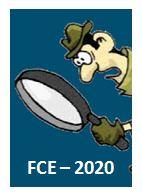 FCE 2020